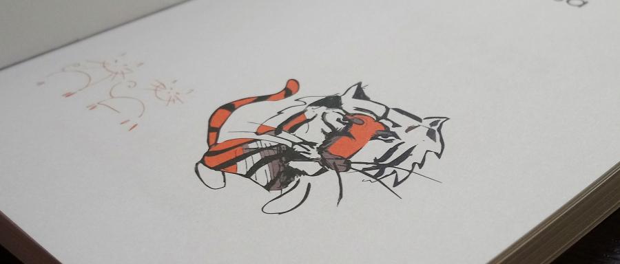 Efekt tygrysa, książka